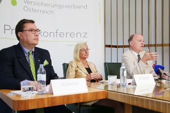 Norman-Audenhove, Stadler, Thann (Bild: VVO/APA-Fotoservice/Hautzinger)